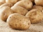 Ziemniaki Lord, Denar, Gwiazda w kalibrażu: - 35-55